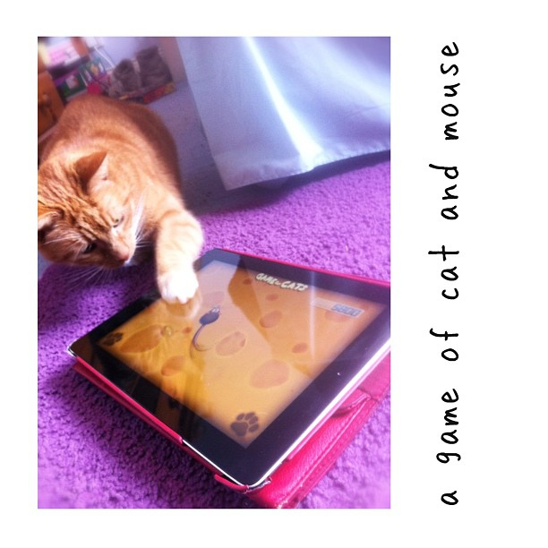 cat and mouse, and an ipad
