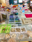 Janmary Designs Jewellery Making Workshop in Portrush, Northern Ireland