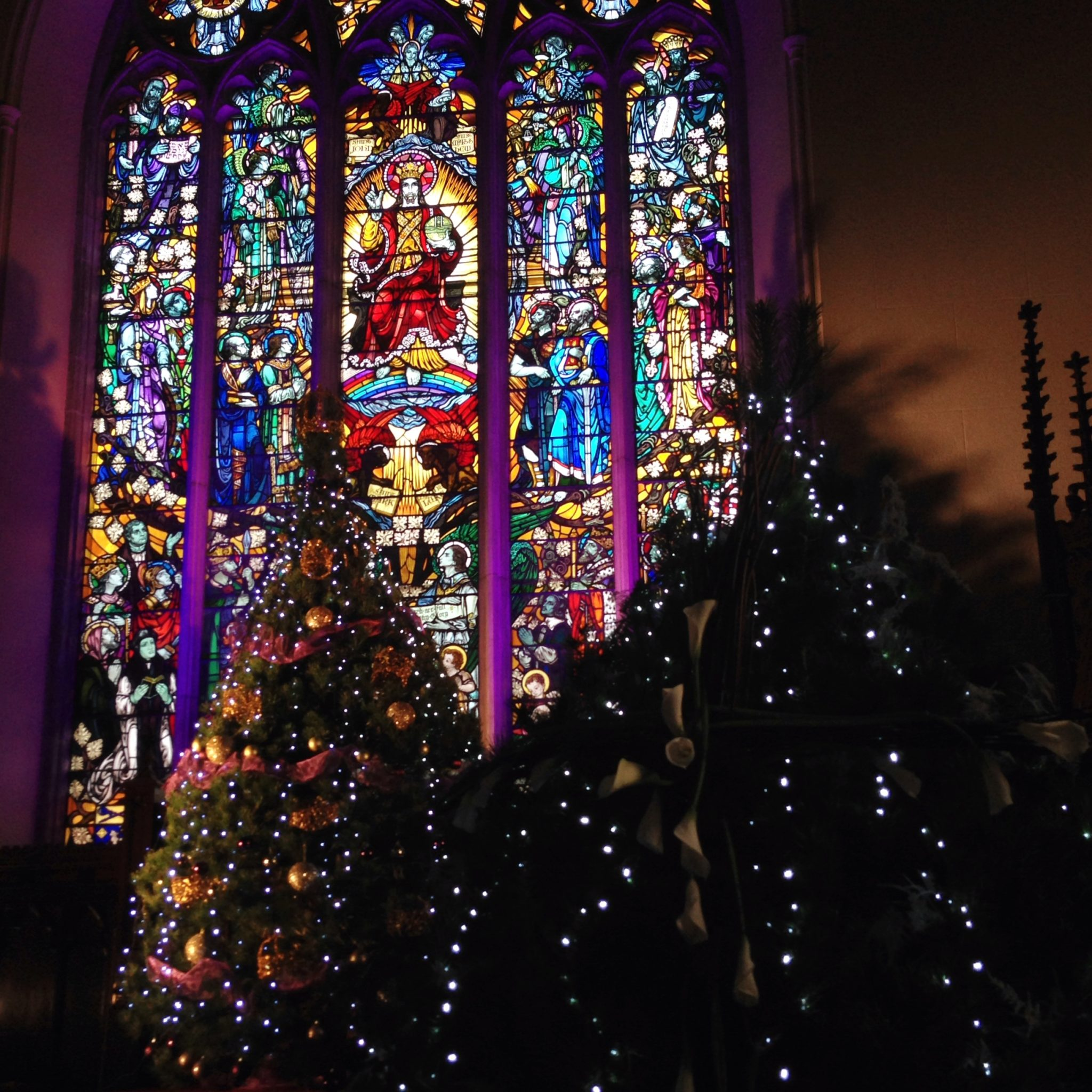 lisburn cathedral christmas tree festival