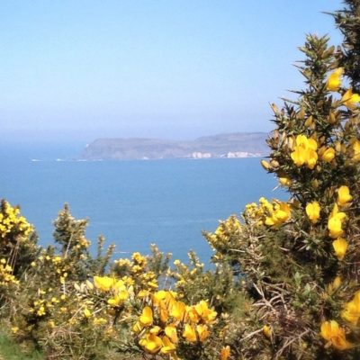 Lovely views of Rathlin today