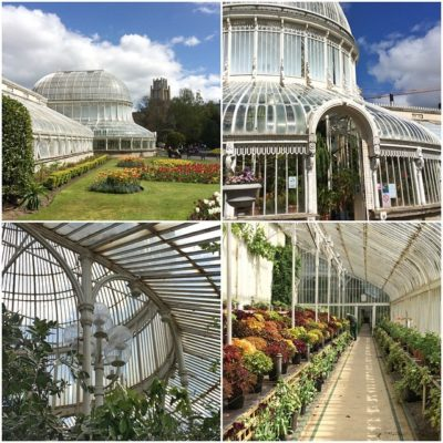 The Palm House, Botanic Gardens, Belfast