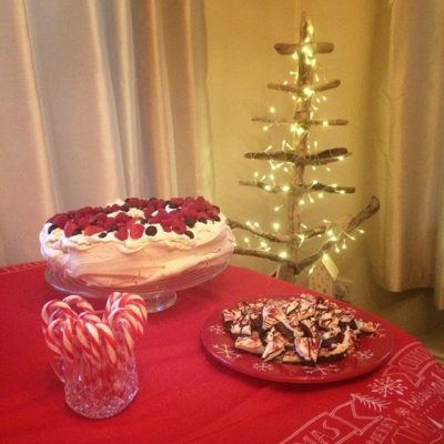 Pavlova and peppermint bark – yum!