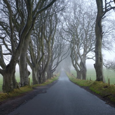 Dark Hedges with Fujifilm X100s camera