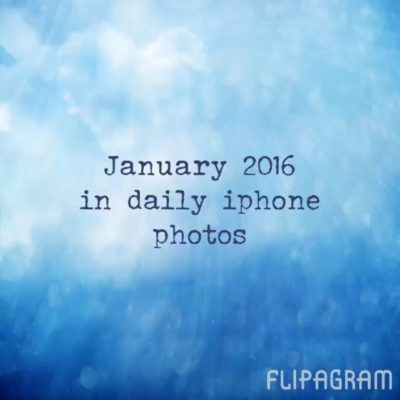 January 2015 in daily iPhone photos