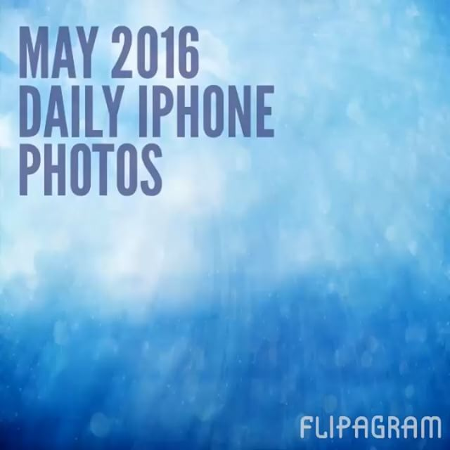 May 2016 in daily iPhone photos