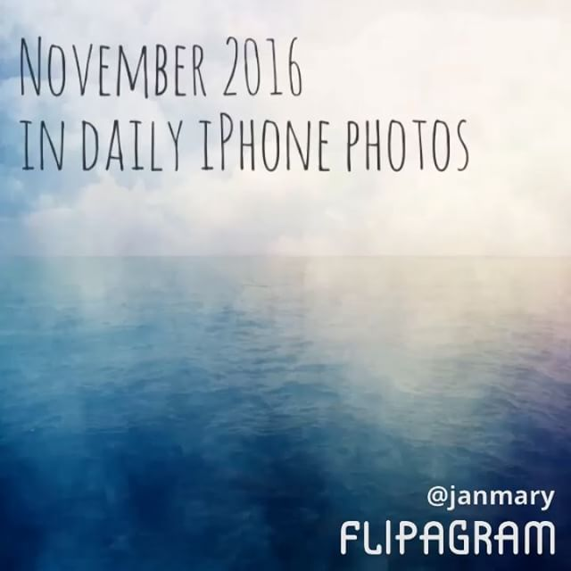 Another month completed - daily iPhone photos for November