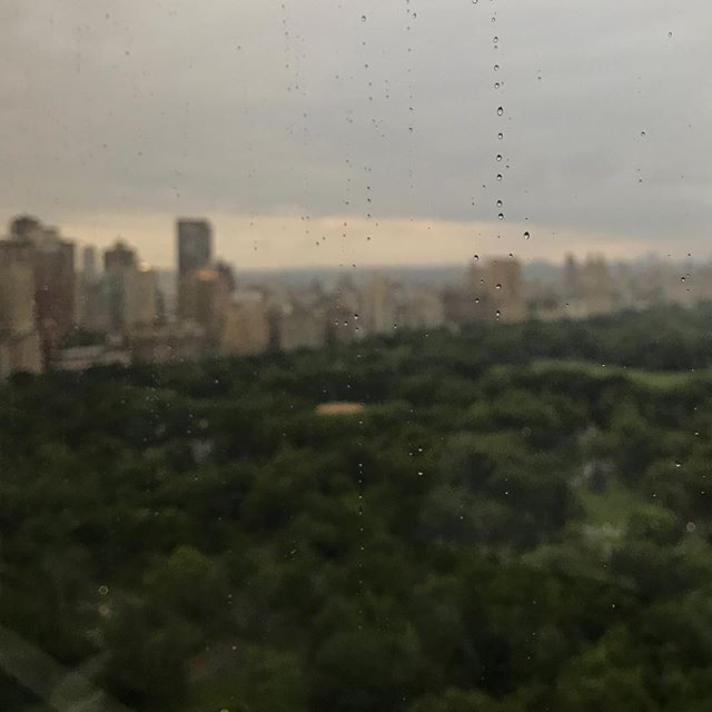 Still a stunning view of Central Park even with a little rain