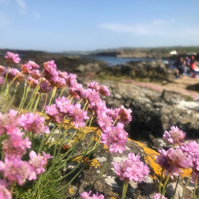A perfectly lovely afternoon at Dunseverick